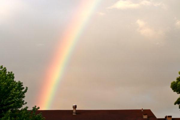 rainbow - 5